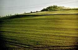 landschaft_3.jpg